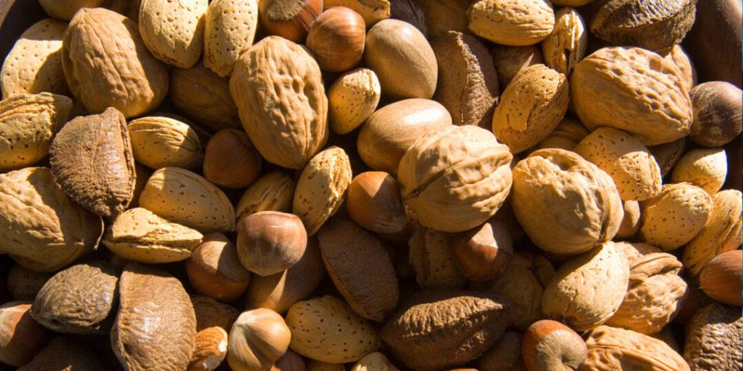 Surviving-Nut-Allergy-In-India